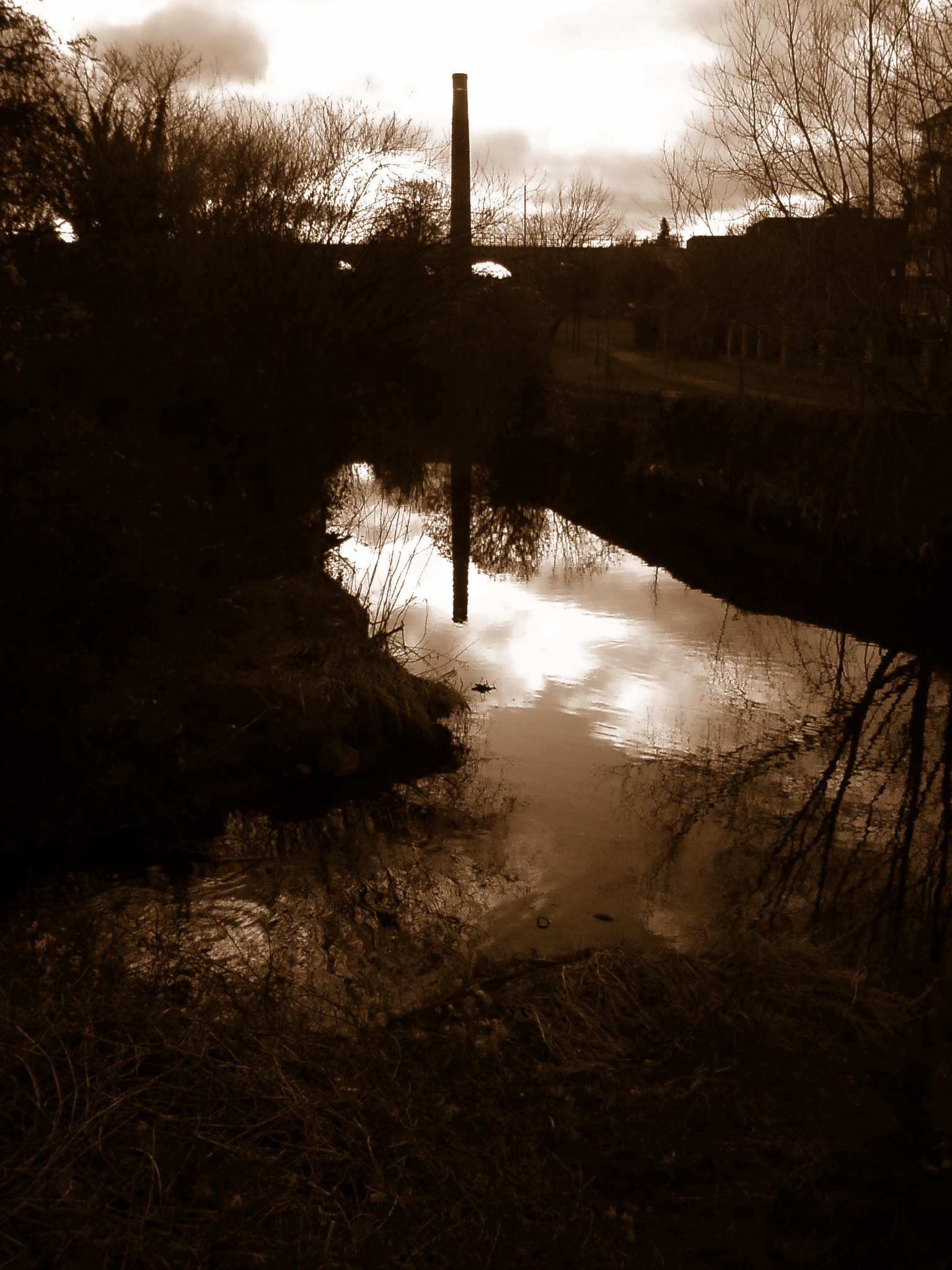 The Dodder at Dusk
